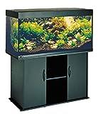 Juwel Aquarium 7300 Rio 300, schwarz
