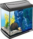 Tetra AquaArt Discovery Line LED Aquarium-Komplett-Set 30 Liter anthrazit (inklusive LED-Beleuchtung, Tag- und Nachtlichtschaltung und EasyCrystal Innenfilter, ideal für Krebse und Garnelen)
