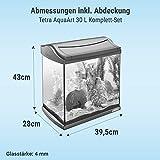Tetra AquaArt Discovery Line LED Aquarium-Komplett-Set 30 Liter anthrazit (inklusive LED-Beleuchtung, Tag- und Nachtlichtschaltung und EasyCrystal Innenfilter, ideal für Krebse und Garnelen) - 3