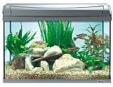 Tetra AquaArt Aquarium-Komplett-Set Tropisch 60 L, anthrazit - 3