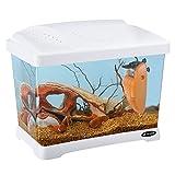 Ferplast 65010011 Aquarium CAPRI JUNIOR, Maße: 41 x 26,5 x 34 cm, 21 Liter, weiss - 3