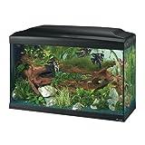 Ferplast 65081017 Aquarium CAYMAN 80 PROFESSIONAL, Maße: 81,5 x 36 x 52,5 cm, 120 Liter, schwarz