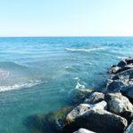 Meerwasseraquarium Strömung